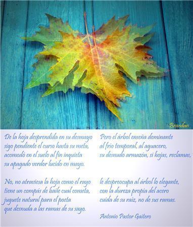 Poema Antonio Pastor. Imagen Brandan
