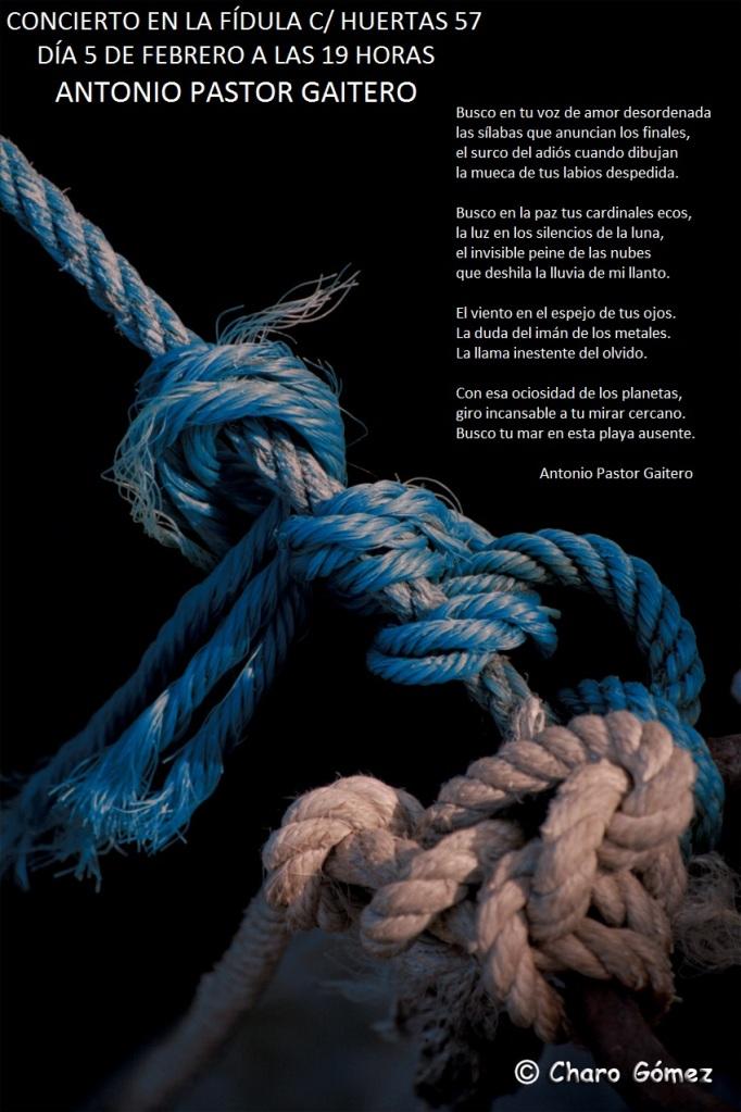 lazo-marinero-azul